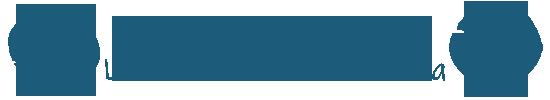 logo_45_web
